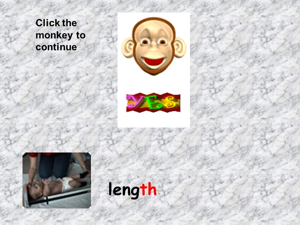 Click the monkey to continue path