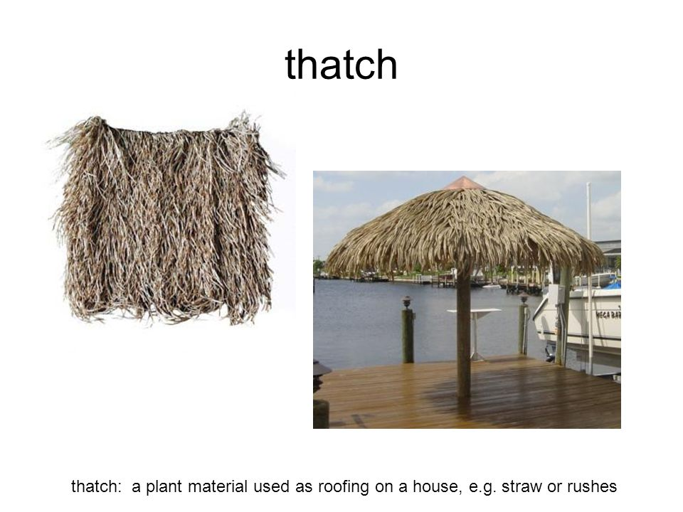 thwack thwack: to smack somebody or something with a flat object such as the flat of the hand