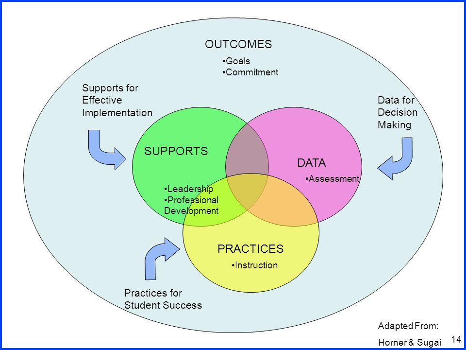 14 SUPPORTS PRACTICES DATA Supports for Effective Implementation Data for Decision Making Practices for Student Success OUTCOMES Adapted From: Horner & Sugai Assessment Goals Commitment Instruction Leadership Professional Development
