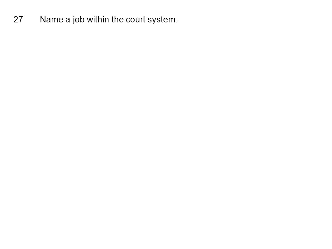 27Name a job within the court system.