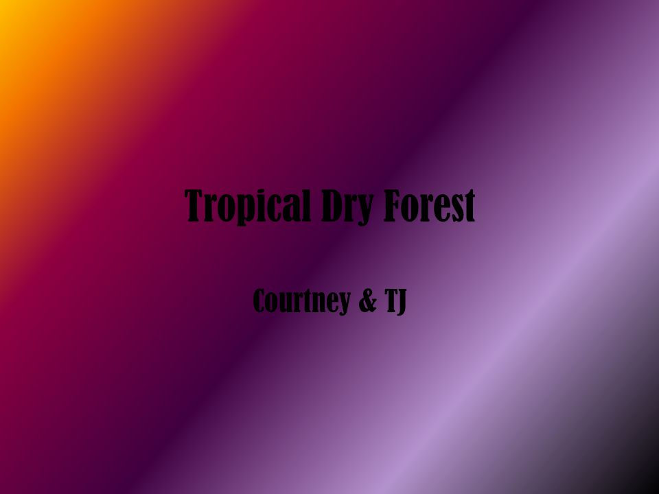 Tropical Dry Forest Courtney & TJ