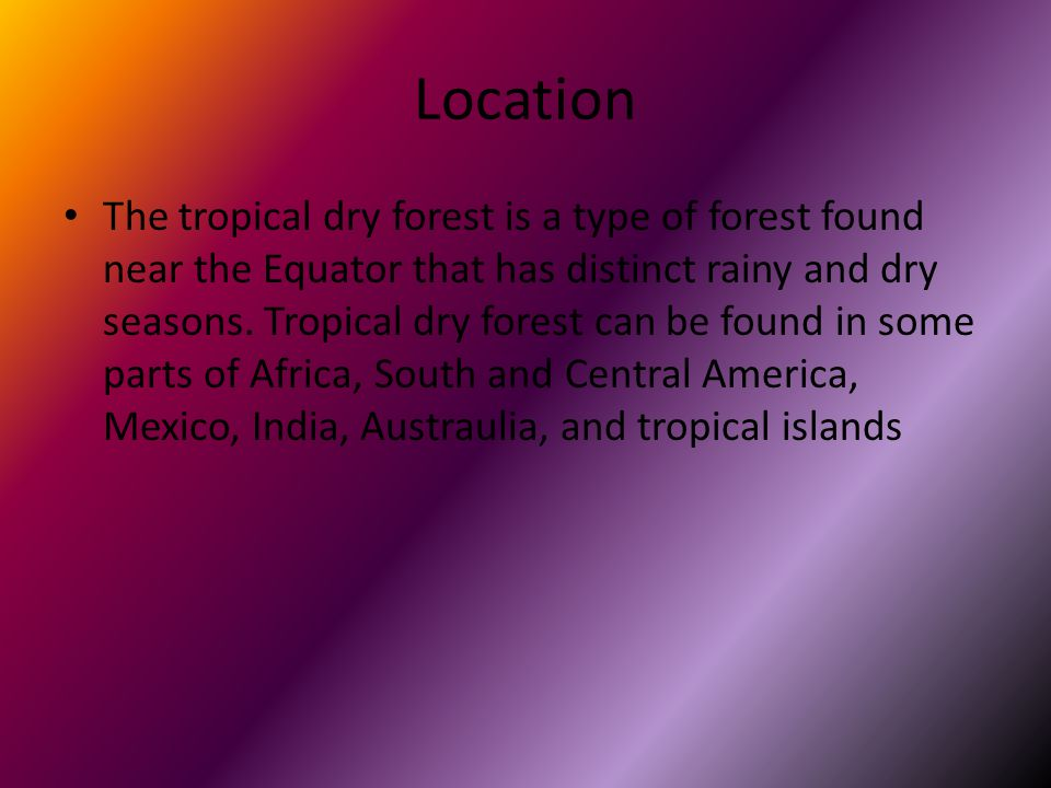 Location The tropical dry forest is a type of forest found near the Equator that has distinct rainy and dry seasons.
