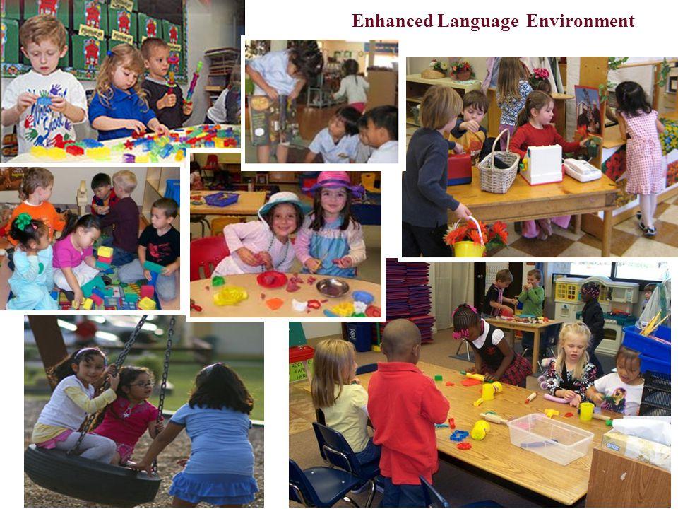 Enhanced Language Environment Theme based