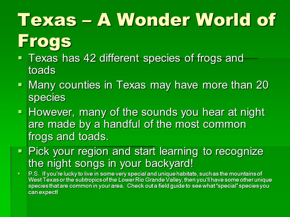 Texas – A Wonder World of Frogs  Texas has 42 different species of frogs and toads  Many counties in Texas may have more than 20 species  However,