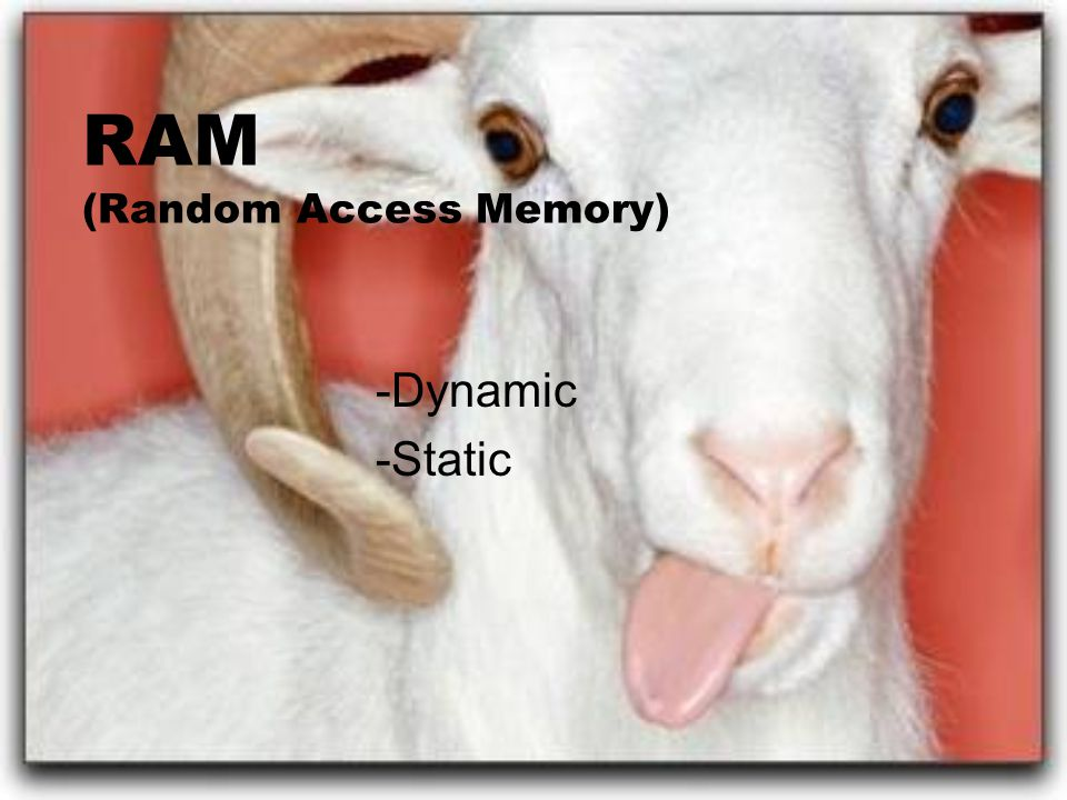 RAM (Random Access Memory) -Dynamic -Static