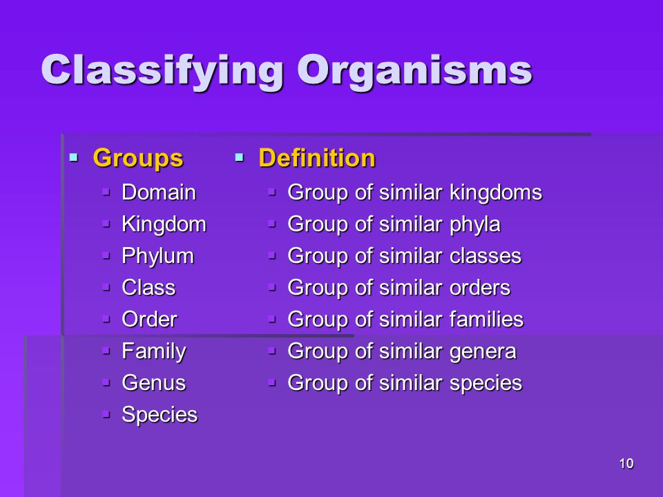 Classifying Organisms  Groups  Domain  Kingdom  Phylum  Class  Order  Family  Genus  Species  Definition  Group of similar kingdoms  Group of similar phyla  Group of similar classes  Group of similar orders  Group of similar families  Group of similar genera  Group of similar species 10