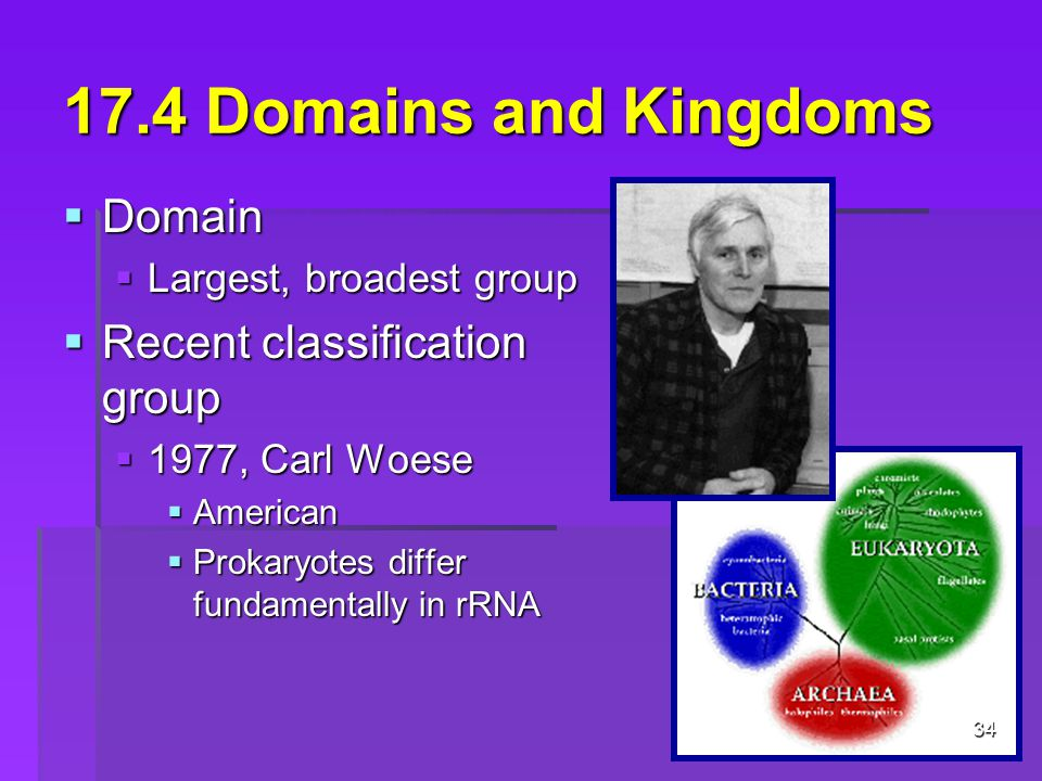 17.4 Domains and Kingdoms  Domain  Largest, broadest group  Recent classification group  1977, Carl Woese  American  Prokaryotes differ fundamentally in rRNA 34
