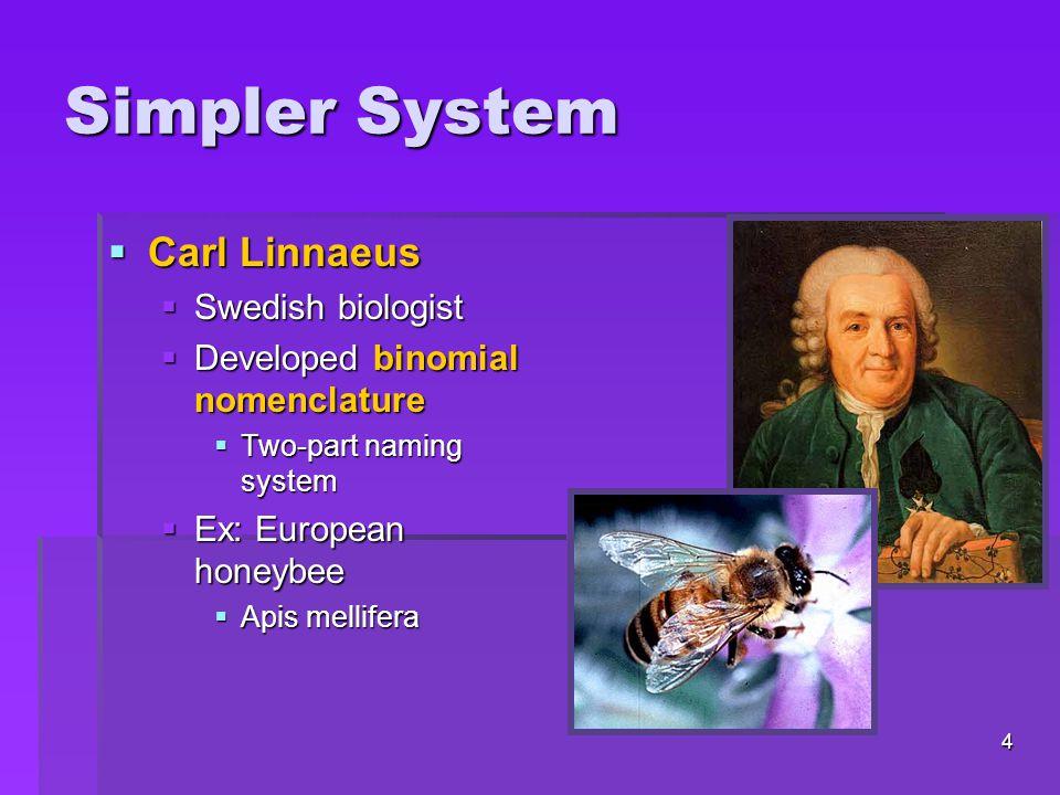 Simpler System  Carl Linnaeus  Swedish biologist  Developed binomial nomenclature  Two-part naming system  Ex: European honeybee  Apis mellifera