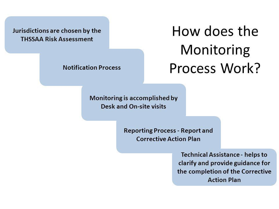 How does the Monitoring Process Work.