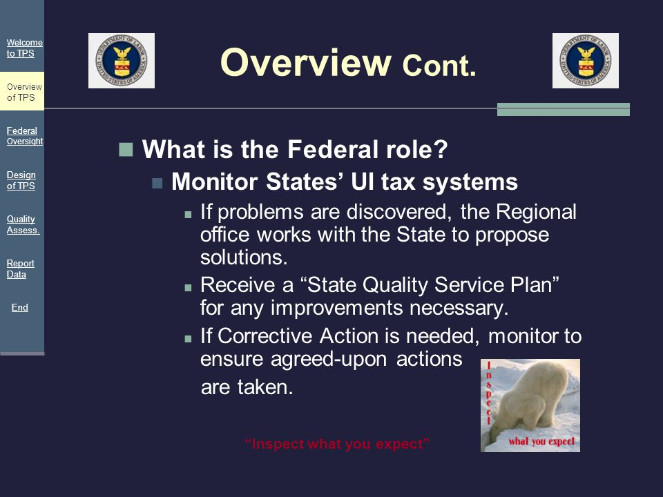 Overview Cont. What is the Federal role? Monitor States' UI tax systems If problems are discovered, the Regional office works with the State to propos