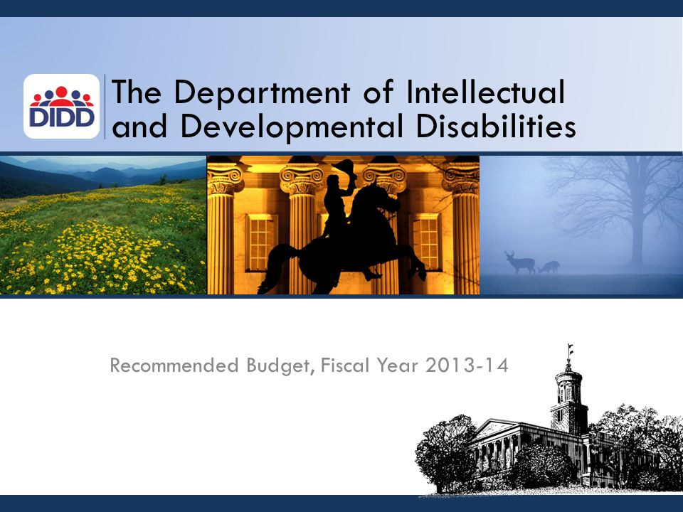 The Department of Intellectual and Developmental Disabilities Recommended Budget, Fiscal Year 2013-14