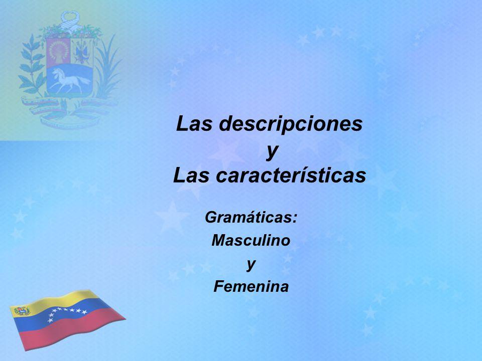 Las descripciones y Las características Gramáticas: Masculino y Femenina
