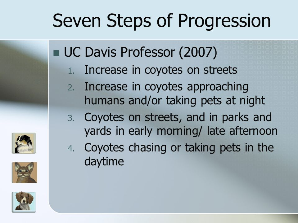 Seven Steps of Progression UC Davis Professor (2007) 1. Increase in coyotes on streets 2. Increase in coyotes approaching humans and/or taking pets at