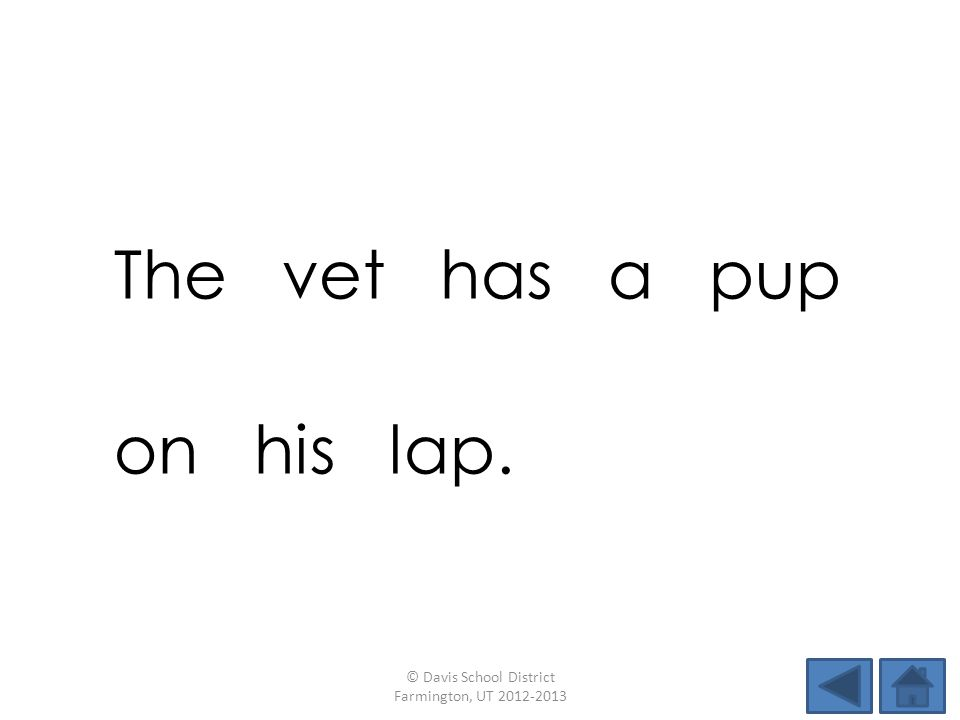 The vet has a pup on his lap. © Davis School District Farmington, UT 2012-2013