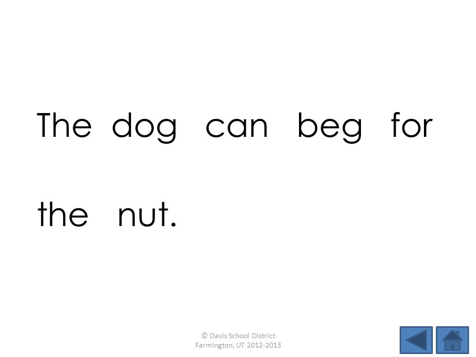 The dog can beg for the nut. © Davis School District Farmington, UT 2012-2013