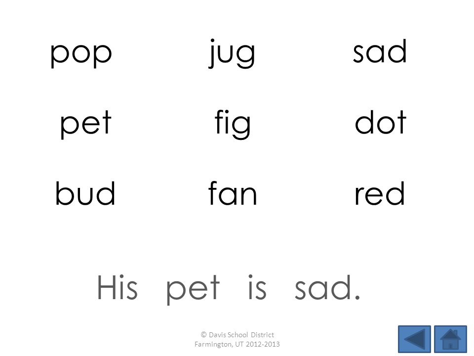 pop jugsad petfigdot budfanred His pet is sad. © Davis School District Farmington, UT 2012-2013