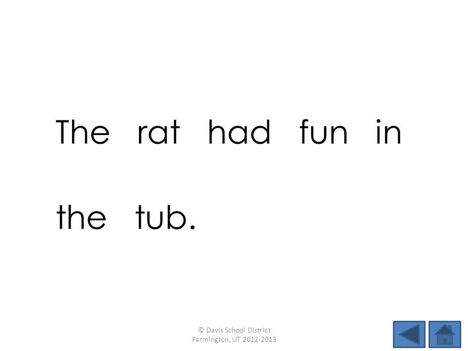 The rat had fun in the tub. © Davis School District Farmington, UT 2012-2013