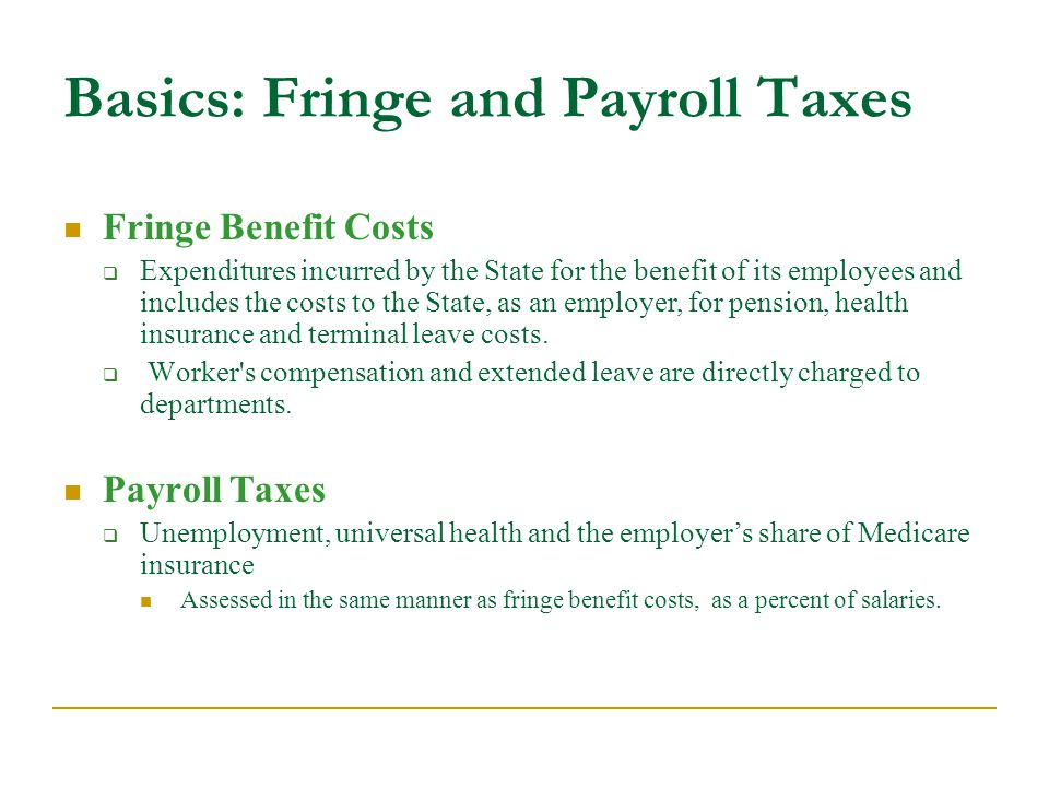 Fringe Benefit Costs  Expenditures incurred by the State for the benefit of its employees and includes the costs to the State, as an employer, for pension, health insurance and terminal leave costs.