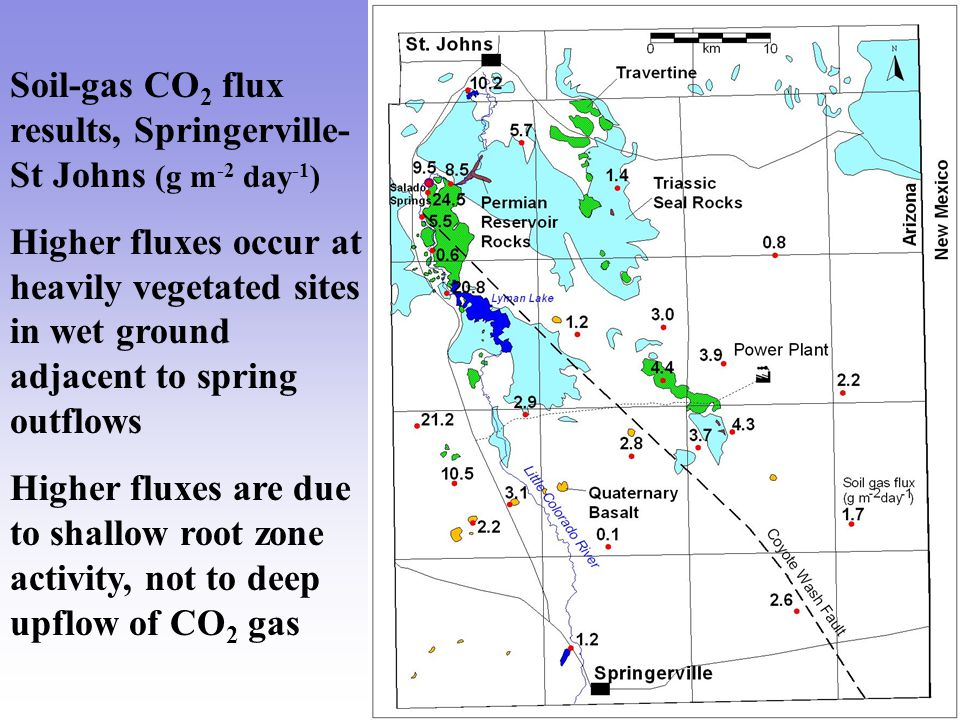 Soil-gas CO 2 flux results, Springerville- St Johns (g m -2 day -1 ) Higher fluxes occur at heavily vegetated sites in wet ground adjacent to spring outflows Higher fluxes are due to shallow root zone activity, not to deep upflow of CO 2 gas
