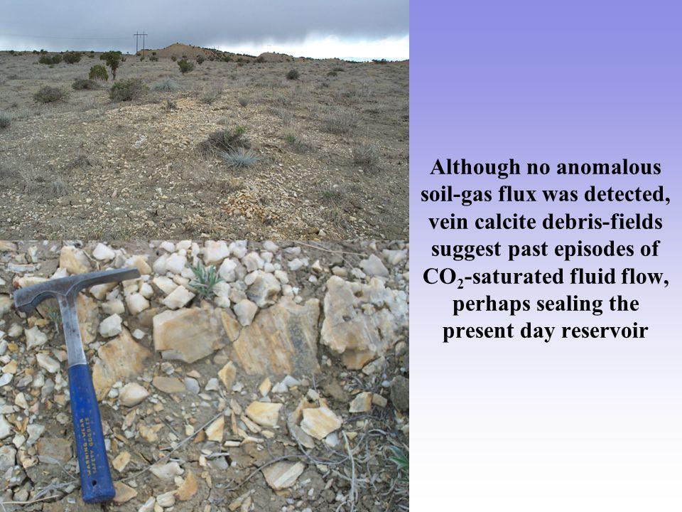 Although no anomalous soil-gas flux was detected, vein calcite debris-fields suggest past episodes of CO 2 -saturated fluid flow, perhaps sealing the present day reservoir