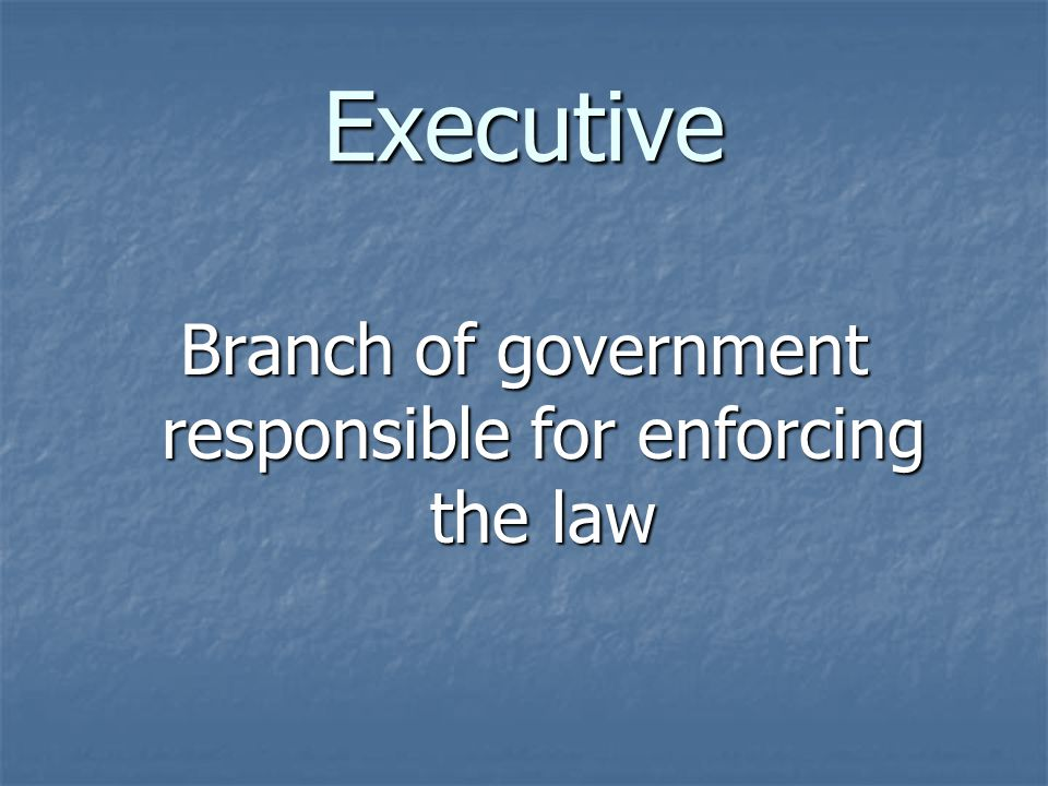 Executive Branch of government responsible for enforcing the law