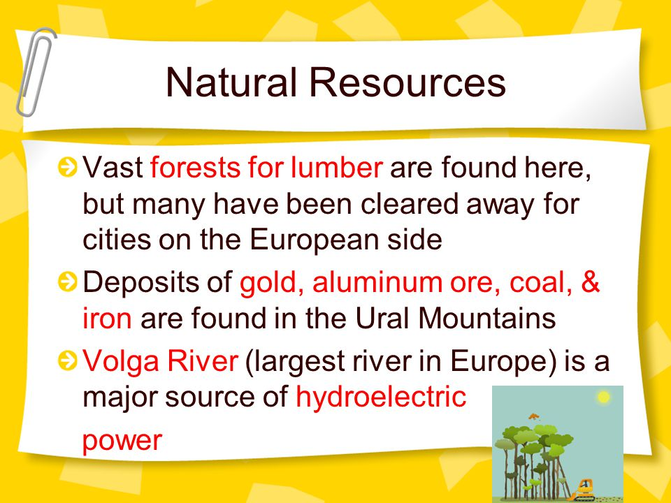 Natural Resources Vast forests for lumber are found here, but many have been cleared away for cities on the European side Deposits of gold, aluminum ore, coal, & iron are found in the Ural Mountains Volga River (largest river in Europe) is a major source of hydroelectric power