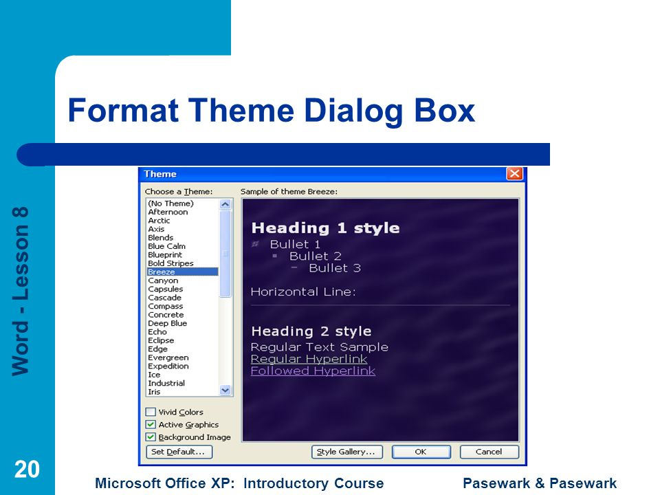 Word - Lesson 8 Microsoft Office XP: Introductory Course Pasewark & Pasewark 20 Format Theme Dialog Box