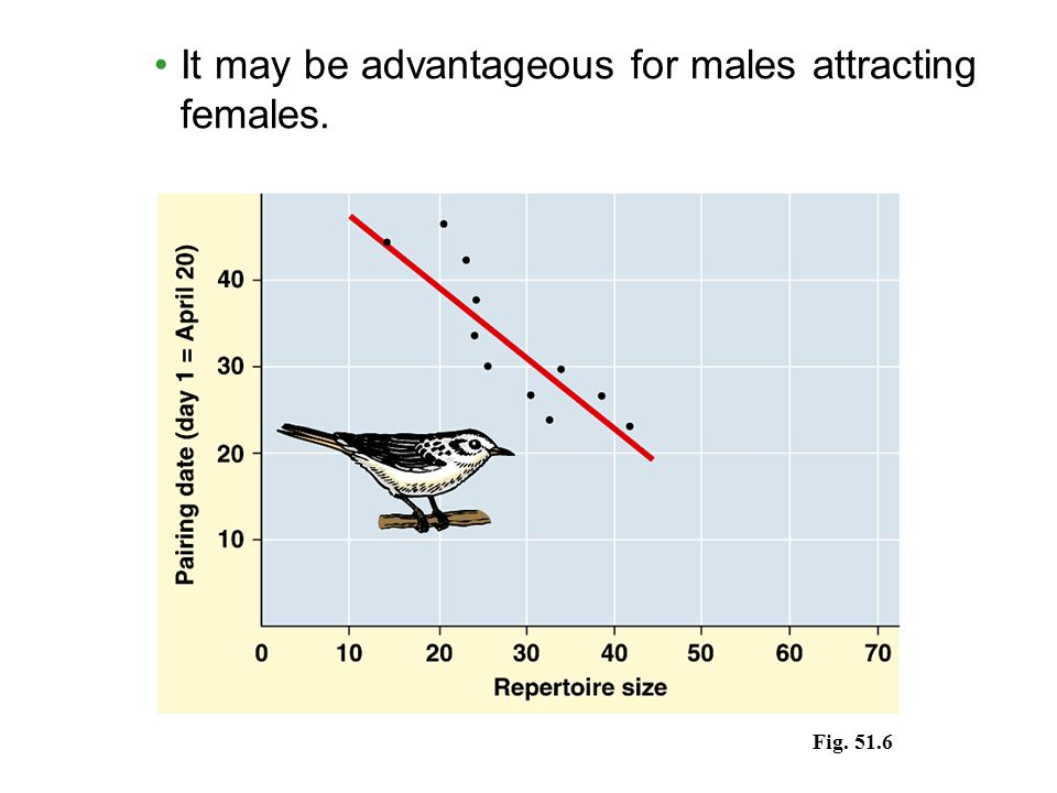 It may be advantageous for males attracting females. Fig. 51.6
