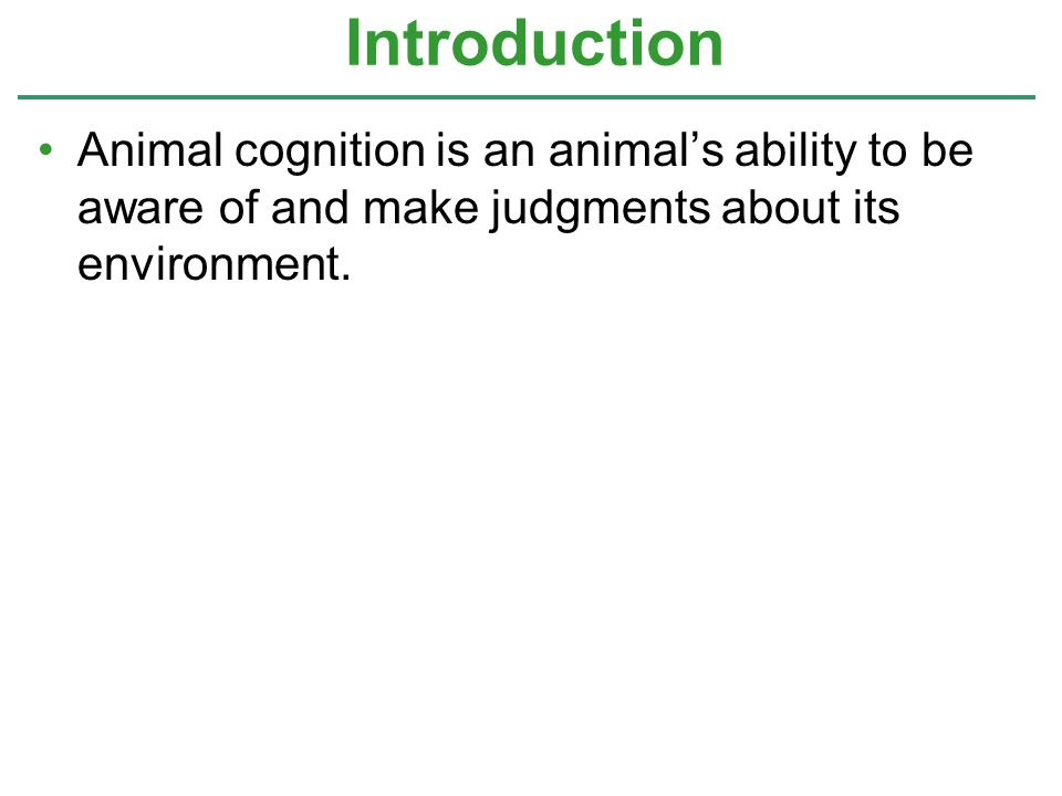Animal cognition is an animal's ability to be aware of and make judgments about its environment. Introduction