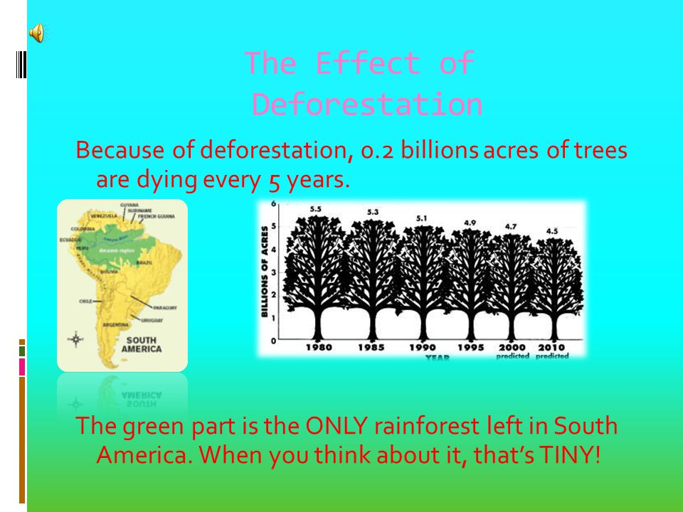 The Effect of Deforestation Because of deforestation, 0.2 billions acres of trees are dying every 5 years.