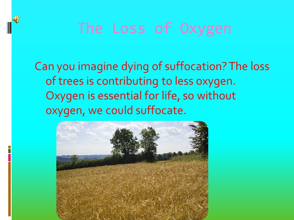 The Loss of Oxygen Can you imagine dying of suffocation.