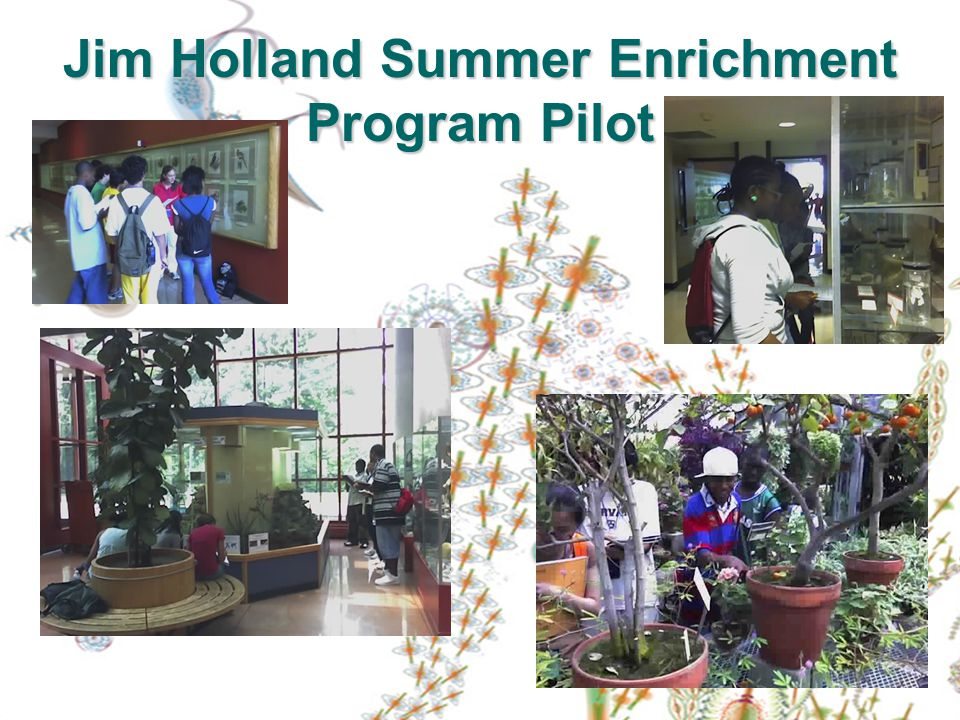 Jim Holland Summer Enrichment Program Pilot