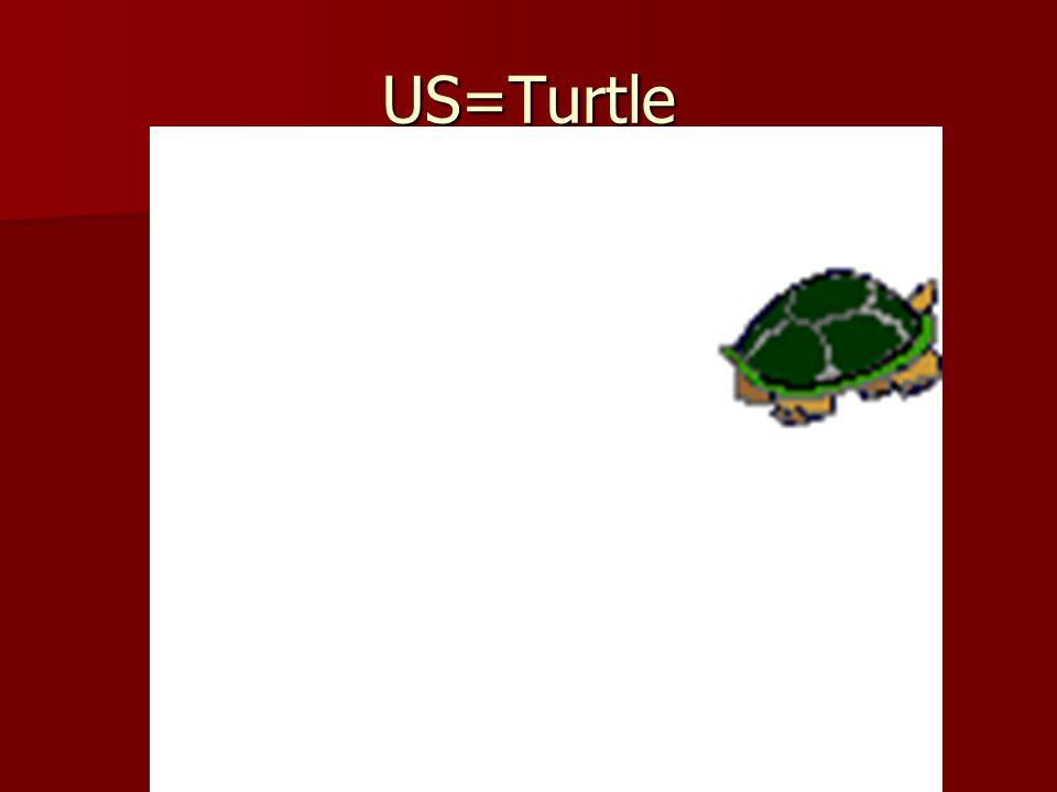 US=Turtle