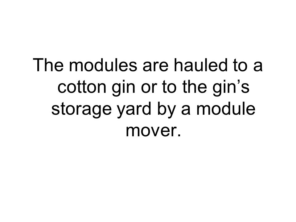 The modules are hauled to a cotton gin or to the gin's storage yard by a module mover.
