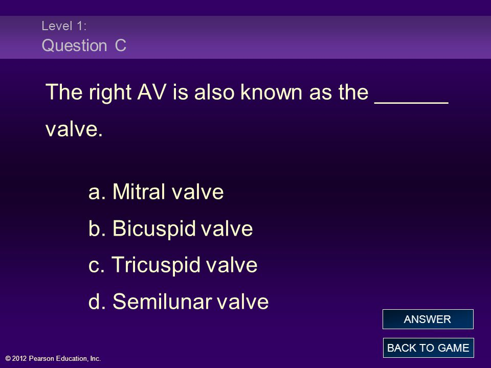 © 2012 Pearson Education, Inc.Level 1: Question C The right AV is also known as the ______ valve.