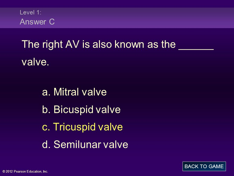 © 2012 Pearson Education, Inc.Level 1: Answer C The right AV is also known as the ______ valve.