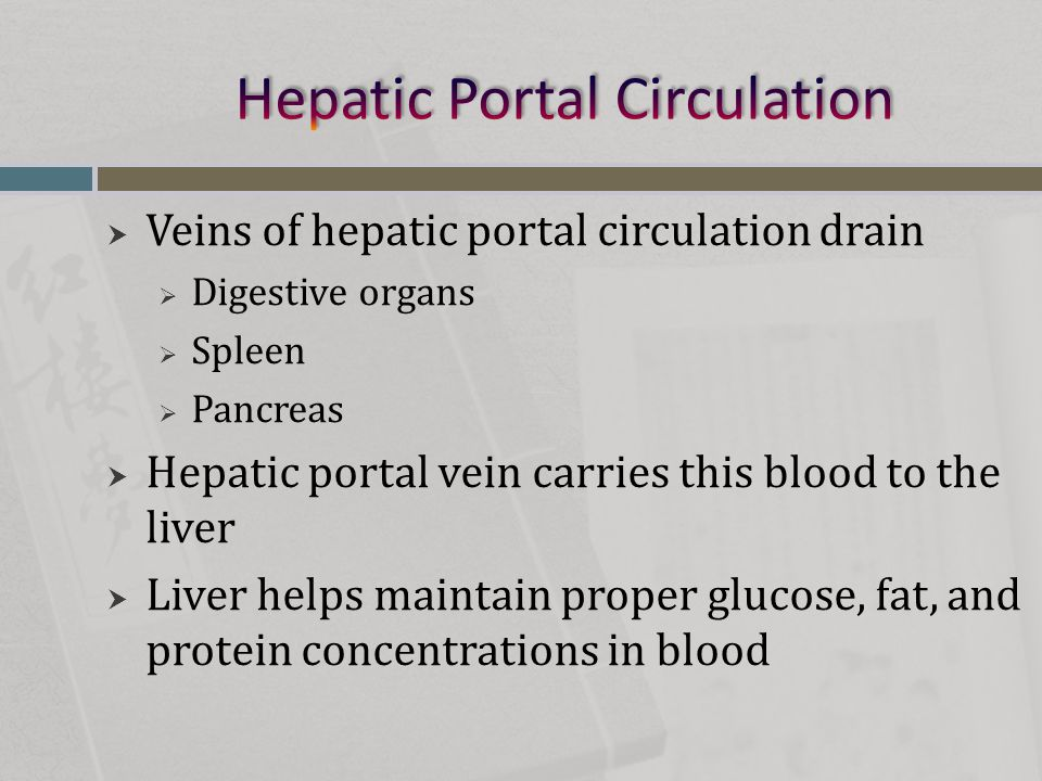  Veins of hepatic portal circulation drain  Digestive organs  Spleen  Pancreas  Hepatic portal vein carries this blood to the liver  Liver helps