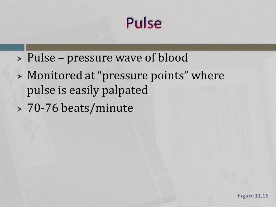 """ Pulse – pressure wave of blood  Monitored at """"pressure points"""" where pulse is easily palpated  70-76 beats/minute Figure 11.16"""