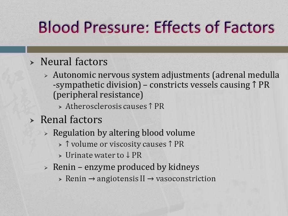  Neural factors  Autonomic nervous system adjustments (adrenal medulla -sympathetic division) – constricts vessels causing ↑ PR (peripheral resistan