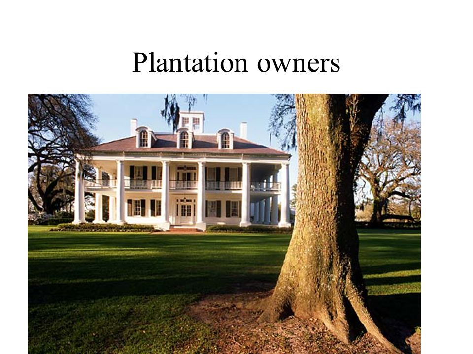 Plantation owners