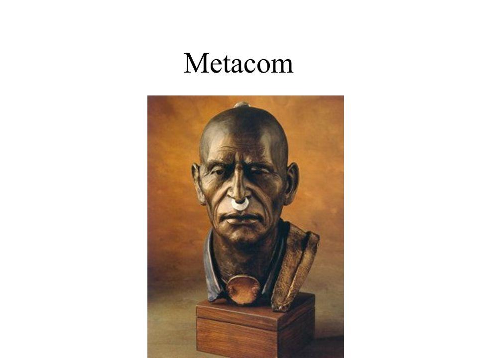 Metacom