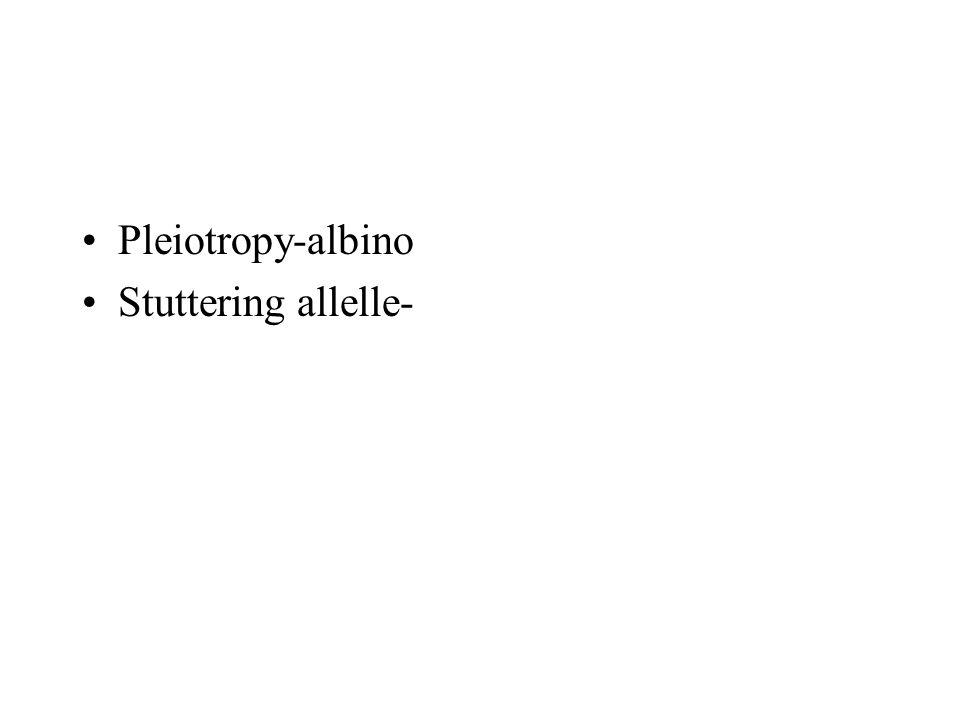 Pleiotropy-albino Stuttering allelle-