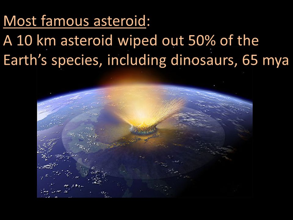 Most famous asteroid: A 10 km asteroid wiped out 50% of the Earth's species, including dinosaurs, 65 mya