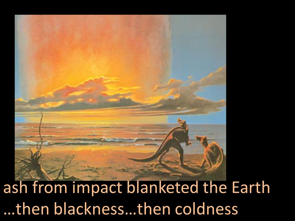 ash from impact blanketed the Earth …then blackness…then coldness