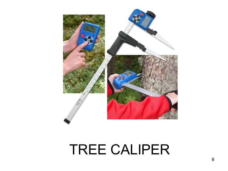 TREE CALIPER 6