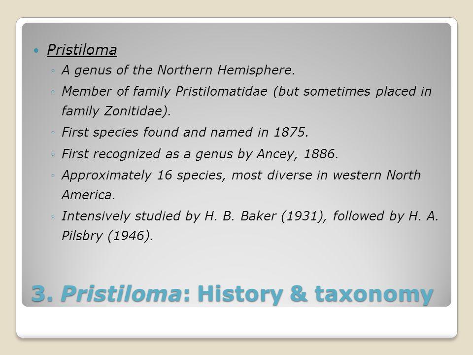 3. Pristiloma: History & taxonomy Pristiloma ◦A genus of the Northern Hemisphere. ◦Member of family Pristilomatidae (but sometimes placed in family Zo
