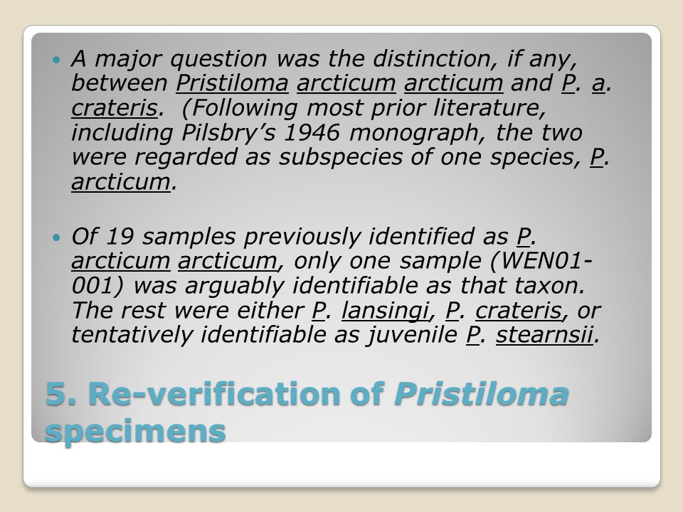5. Re-verification of Pristiloma specimens A major question was the distinction, if any, between Pristiloma arcticum arcticum and P. a. crateris. (Fol