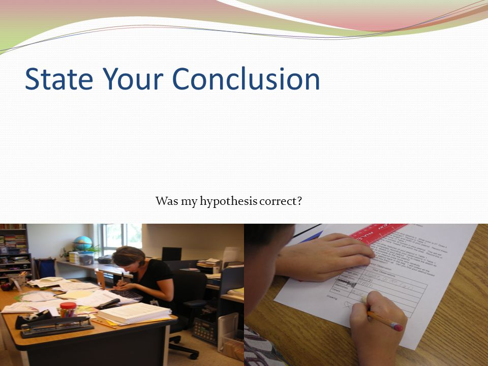 State Your Conclusion Was my hypothesis correct?
