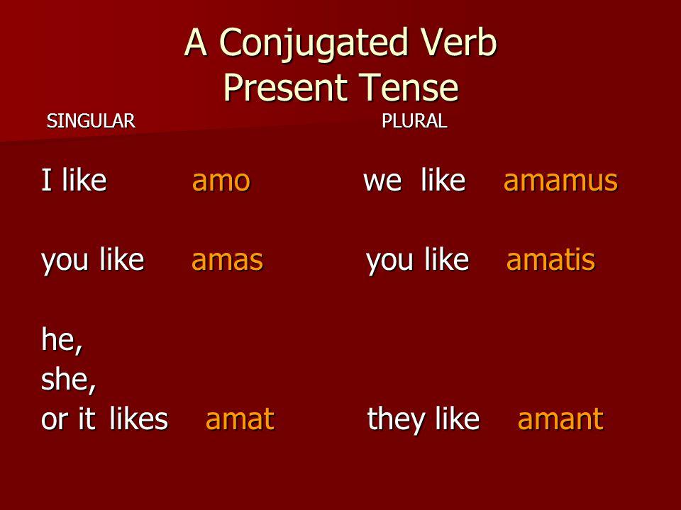 A Conjugated Verb Present Tense SINGULAR PLURAL SINGULAR PLURAL I like amo we like amamus you like amas you like amatis he,she, or itlikes amat they l
