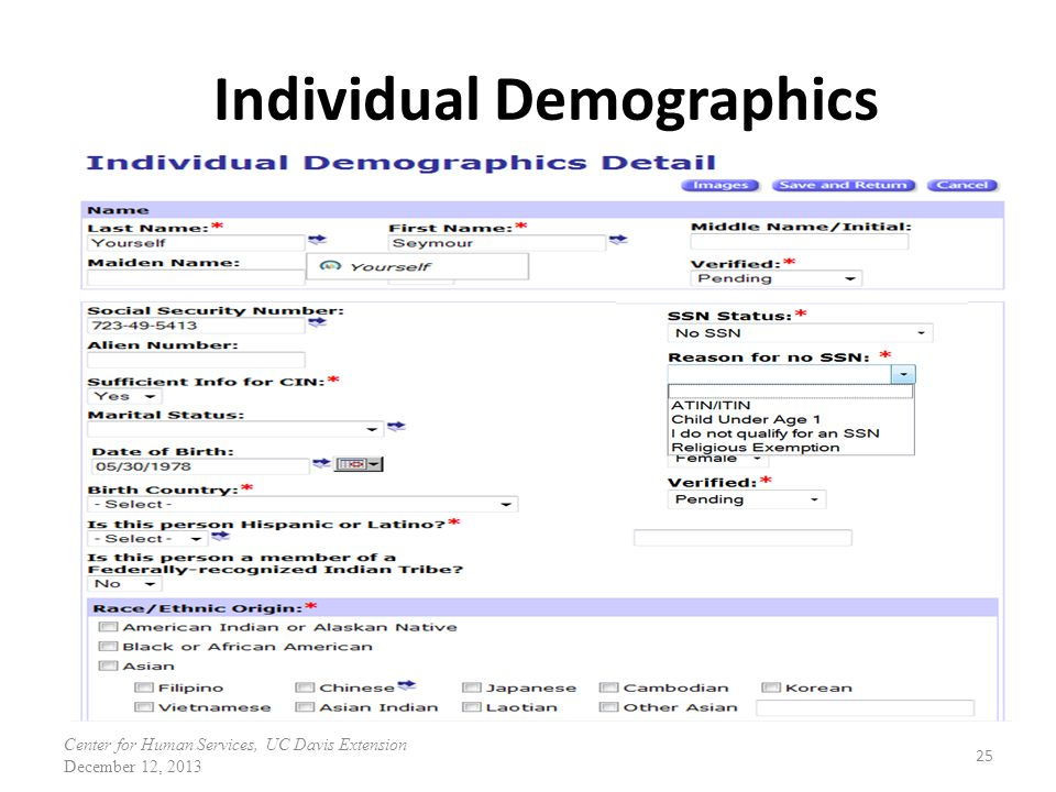 Individual Demographics 25 Center for Human Services, UC Davis Extension December 12, 2013